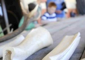 Kinder lernten unter anderem beim römischen Wochenende im LVR-Archäologischen Park, wie man mit Knochen schnitzt. Foto: Ute Gabriel